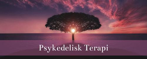Psykedelisk Terapi